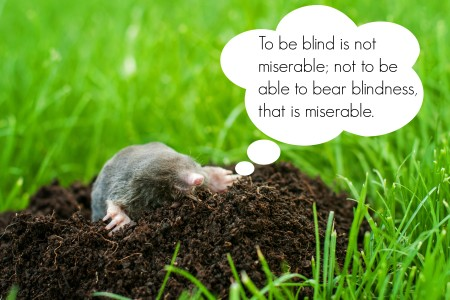 Mole on a heap of soil in a field